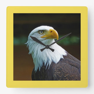 Bald Eagle Head Square Wall Clock