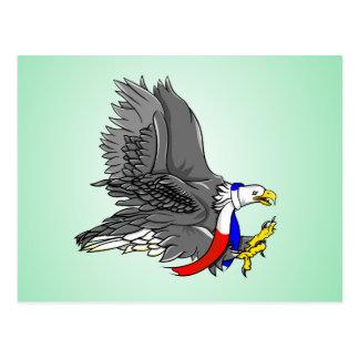 Bald Eagle Hunting Prey USA Scarf Postcard