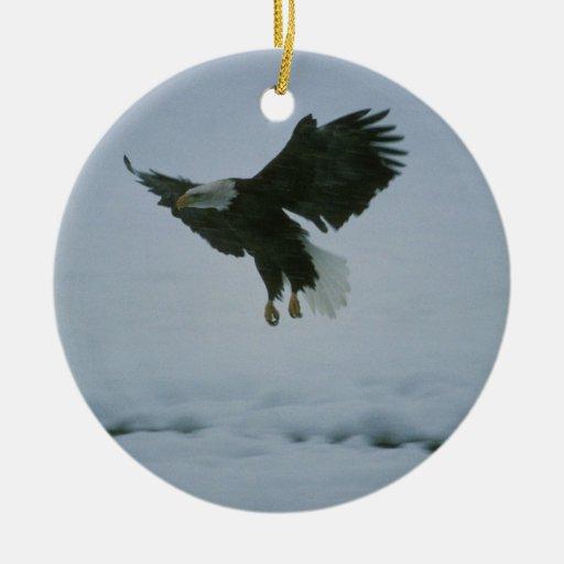 bald eagle in flight ornaments