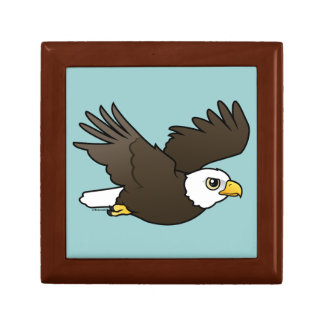 Bald Eagle in flight Gift Box