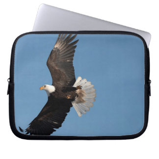 Bald Eagle in Flight, Haliaeetus leucocephalus, 2 Laptop Sleeve