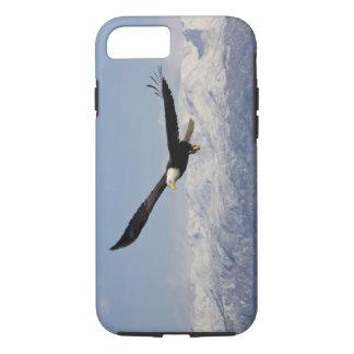 Bald Eagle in Flight, Haliaeetus leucocephalus, 3 iPhone 8/7 Case
