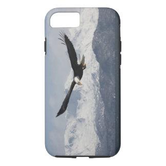 Bald Eagle in Flight, Haliaeetus leucocephalus, iPhone 7 Case