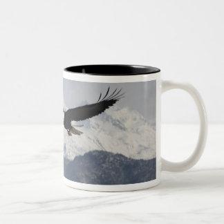 Bald Eagle in Flight, Haliaeetus leucocephalus, Two-Tone Coffee Mug
