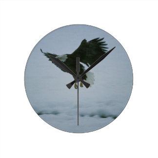 bald eagle in flight round clock