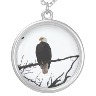 Bald Eagle In Tree Silver Plated Necklace