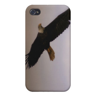 Bald Eagle Case For iPhone 4