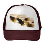 Bald Eagle Landing Hat
