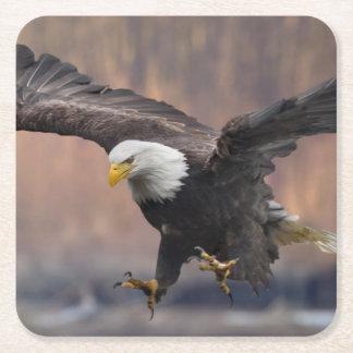 Bald Eagle landing Square Paper Coaster