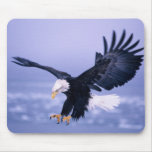 Bald Eagle Landing Wings Spread in a Storm, Mouse Pads