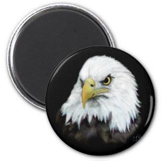 Bald Eagle Magnet 2