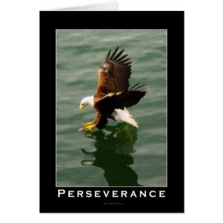Bald Eagle Motivational Gift Greeting Cards