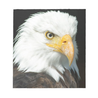 Bald Eagle Notepad