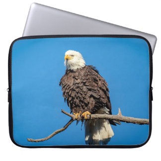 Bald Eagle on a tree branch Laptop Sleeve