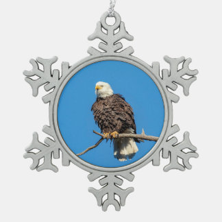 Bald Eagle on a tree branch Pewter Snowflake Decoration