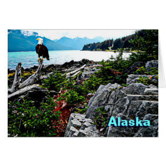 Bald Eagle On Alaska Coast Greeting Card