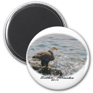 Bald Eagle on the Beach 6 Cm Round Magnet