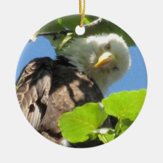 Bald Eagle Ornament