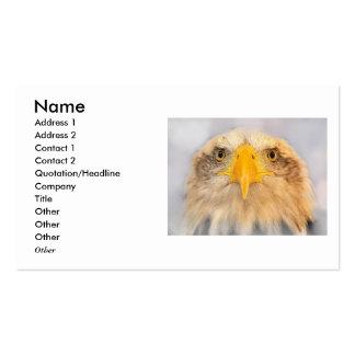 Bald Eagle Pack Of Standard Business Cards