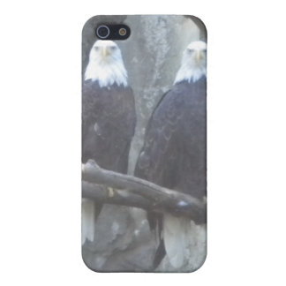 Bald Eagle Pair iPhone4 case Case For The iPhone 5