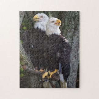 Bald Eagle Pair Puzzle