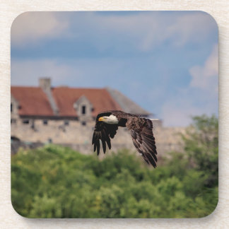 Bald Eagle passing Fort Ticonderoga Coaster