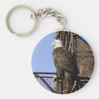 Bald Eagle Perched on Crab Pots Basic Round Button Key Ring