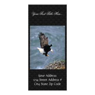 Bald Eagle Personalised Rack Card