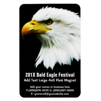 Bald Eagle Photo on Black Rectangular Photo Magnet