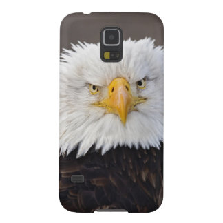 Bald Eagle Portrait, Bald Eagle in flight, Cases For Galaxy S5