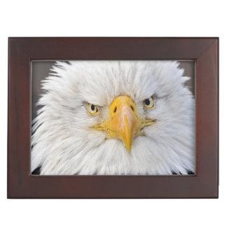 Bald Eagle Portrait, Bald Eagle in flight, Keepsake Box