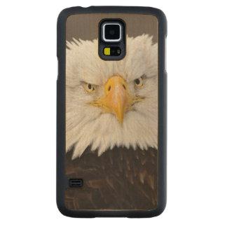 Bald Eagle Portrait, Bald Eagle in flight, Maple Galaxy S5 Case