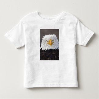 Bald Eagle Portrait, Bald Eagle in flight, Toddler T-Shirt