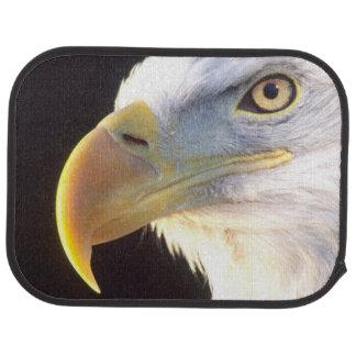 Bald Eagle Portrait, Haliaeetus leucocephalus, Car Mat