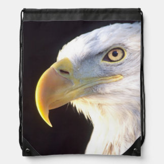 Bald Eagle Portrait, Haliaeetus leucocephalus, Drawstring Bag