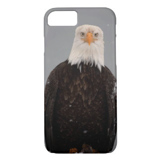 Bald Eagle Portrait in the Snow, Haliaeetus iPhone 8/7 Case