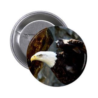 Bald Eagle Pose Button