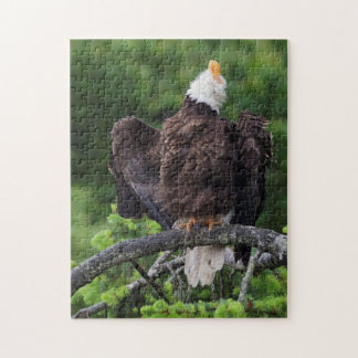 Bald Eagle, Rain Shower Jigsaw Puzzle