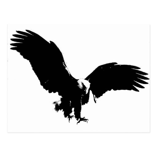 Bald Eagle Silhouette Post Cards