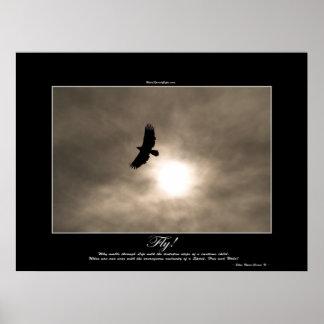 Bald Eagle & Sun Photo Poster