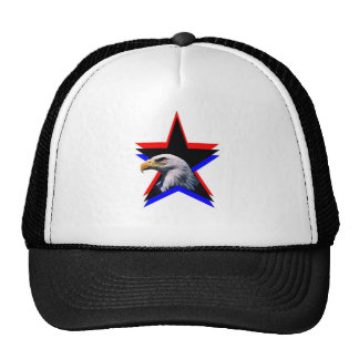 Bald eagle the three star hat