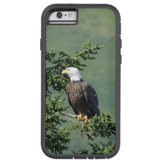 Bald Eagle Tough Xtreme iPhone 6 Case