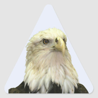 Bald Eagle Triangle Sticker