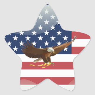Bald eagle Usa flag Star Sticker