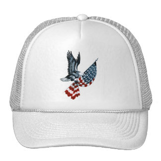 Bald Eagle with American Flag Cap