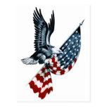 Bald Eagle with American Flag Post Card