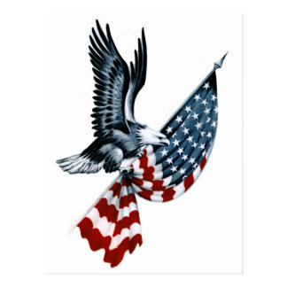 Bald Eagle with American Flag Postcard
