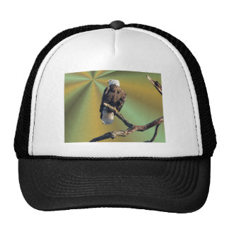 Bald Eagle with earth rays Trucker Hats