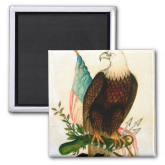 Bald eagle with flag magnet