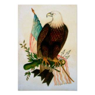 Bald eagle with flag poster
